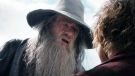 Sir Ian McKellen as Gandalf the Grey in a scene from Lord of the Rings