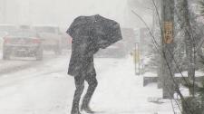 Snowfall in Toronto