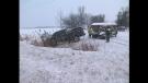 Horseshoe Valley Road Crash