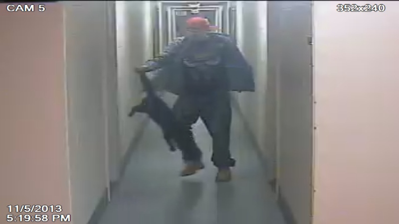 This image taken from surveillance video and released by the London Humane Society shows Justin Kloda, who pleaded guilty to animal cruelty involving a cat, during the incident.