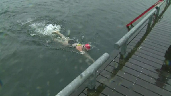 Christine Arsenault completes her swim of the length of Lake Ontario on Tuesday, August 9, 2011.