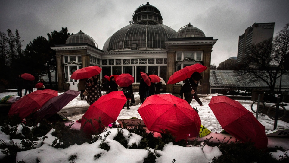 Red umbrellas, that are used as a symbol for sex workers rights, are seen in front of a rally at Allan Gardens park to support Toronto sex workers and their rights in Toronto, Friday, Dec. 20, 2013. (Mark Blinch / THE CANADIAN PRESS)