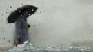 A pedestrian walks with an umbrella in rain in this file photo.