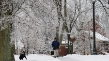 Ice, power outages in Ontario, Quebec, Maritimes