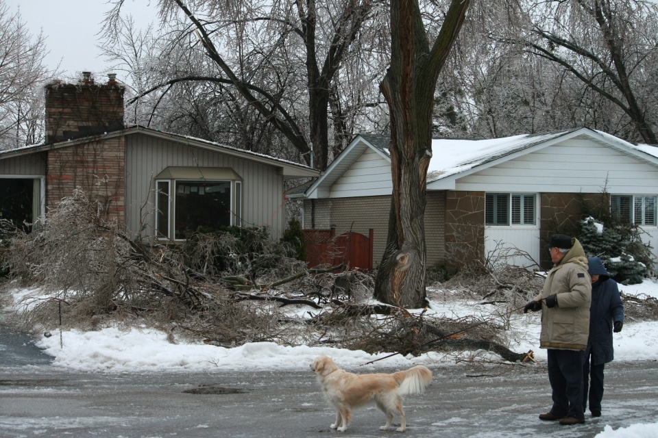 People look at downed tree branches in front of house after an overnight icestorm swept across southern Ontario in Oakville, Ont., Sunday, Dec. 22, 2013 . (Richard Buchan / THE CANADIAN PRESS)