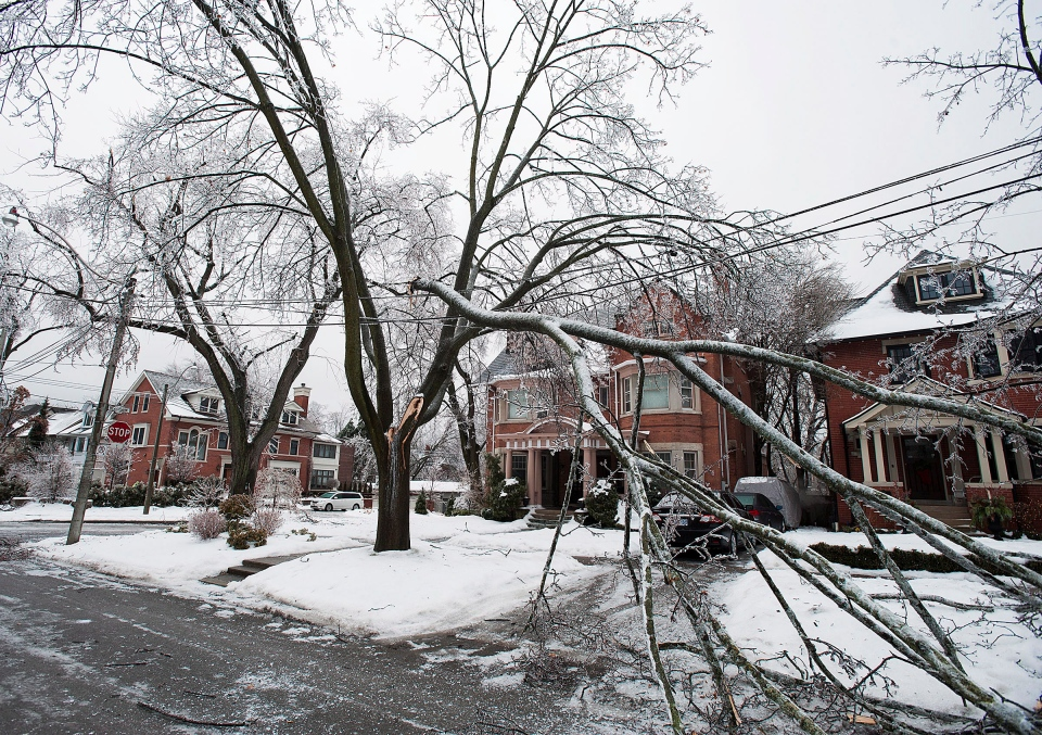 A tree rests on a power line on Heath Street in Toronto after an ice storm caused havoc knocking down trees and power lines in much of the city on Sunday, Dec. 22, 2013. (Aaron Vincent Elkaim / THE CANADIAN PRESS)