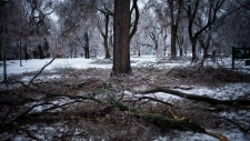 Crippling ice storm strikes Eastern Canada