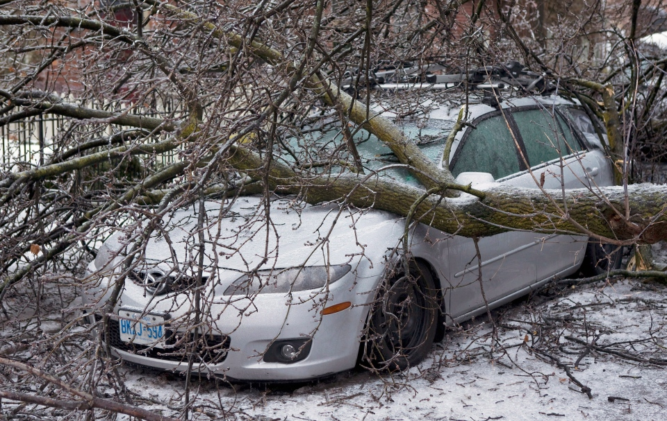 A tree lies on top of a car on Wellesley Street East following an ice storm in Toronto on Monday, Dec. 23, 2013. (Matthew Sherwood / THE CANADIAN PRESS)