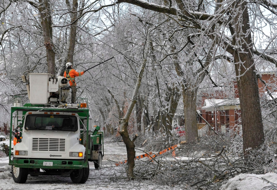 Crews clear branches snagged on power lines on a closed road in Brampton, Ont., Monday, Dec. 23, 2013. (J.P. Moczulski / THE CANADIAN PRESS)