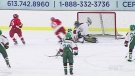 CTV Ottawa:  Hockey Country welcomes the World