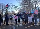 Peaceful rally in Victoria Park for South Sudan on Dec. 28, 2013 Talia Ricci/CTV Londonb