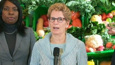 Winter ice storm Ontario Premier Wynne groceries