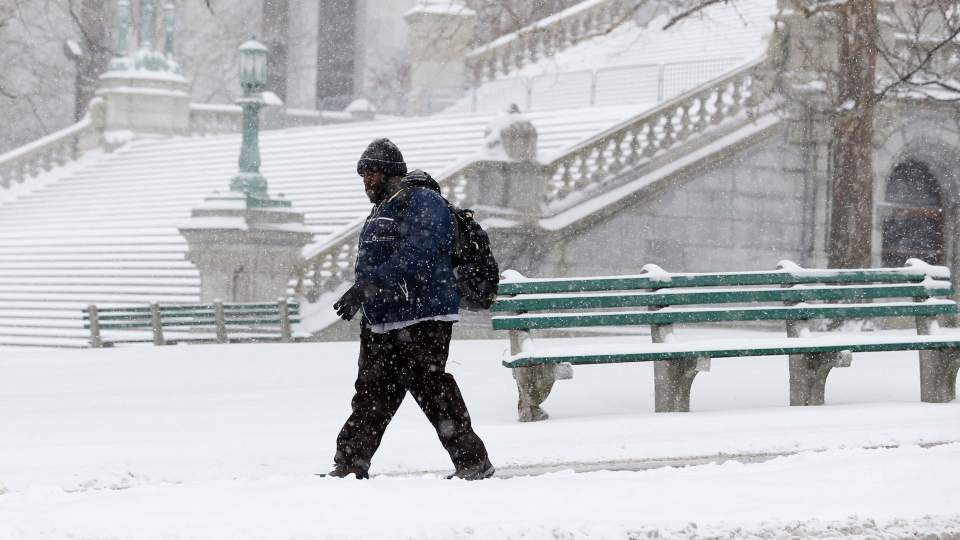 A pedestrian walks through the snow outside the state Capitol on Thursday, Jan. 2, 2014, in Albany, N.Y.  (AP / Mike Groll)