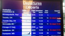 Delta Airlines  flight makes emergency landing