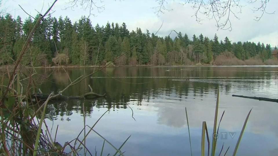 Stanley Park's Lost Lagoon is seen in this undated CTV News file image.