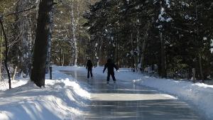 Skating trail DE