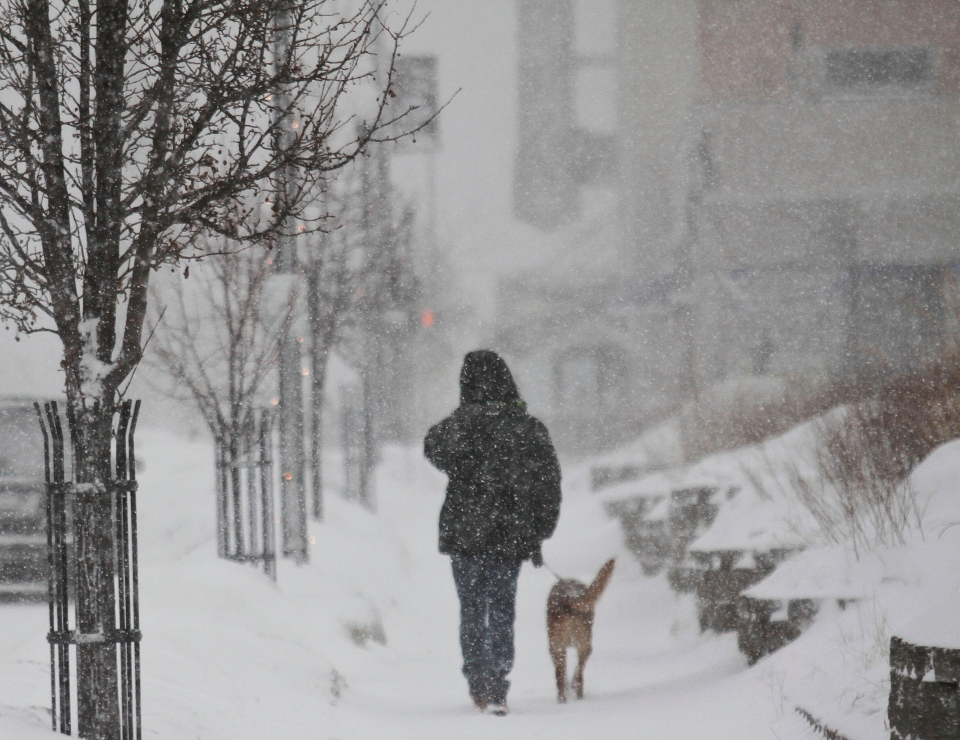 Mike Ashley of Muskegon walks his 6-year-old collie lab mix, Riley, in Muskegon, Mich., on Saturday, Jan. 4, 2013. Winds were recorded to be blowing 20 to 30 mph with gusts up to 45 mph and temperatures in the low 30s. (AP Photo/The Muskegon Chronicle, Madelyn P. Hastings)