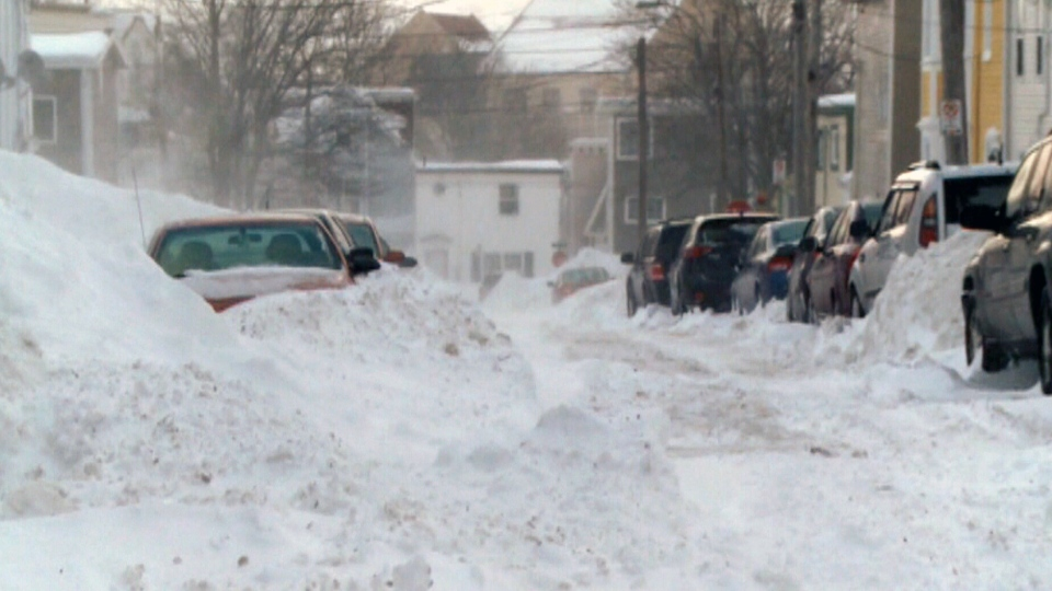 Cars are snowed in after a heavy storm in St. John's, N.L. on Saturday, Jan. 4, 2014.