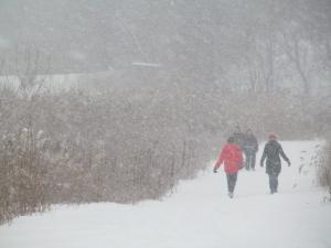 MyNews winter weather
