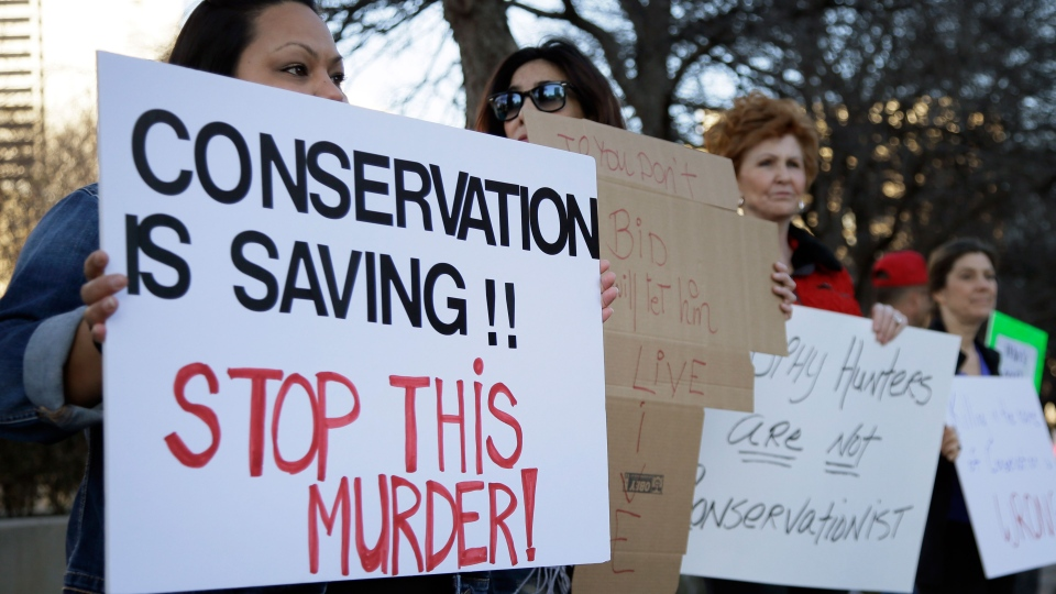 Veronica Rodriguez, left, of Garland Texas, stands with nearly 40 others protesting outside the Dallas Safari Club's weekend show and auction in Dallas on Saturday, Jan. 11, 2014. (AP / Tony Gutierrez)