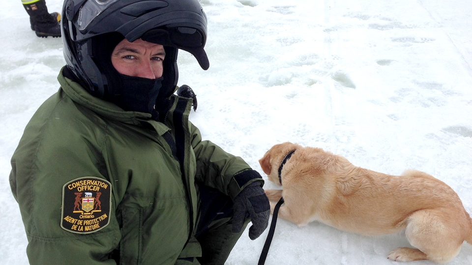MNR canine Tanner takes a well deserved break in Midland Jan. 12, 2014. (KC Colby / CTV Barrie)