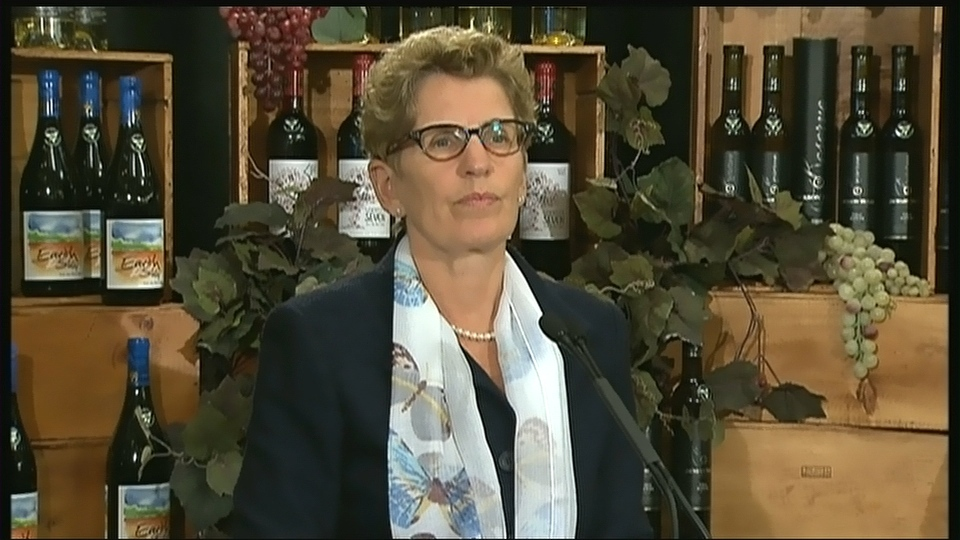 Premier Kathleen Wynne speaks to reporters Wednesday, Jan. 15, 2014.