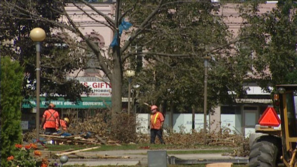 Trees are still being cleared in downtown Goderich, Ont. on Monday, Aug. 29, 2011.