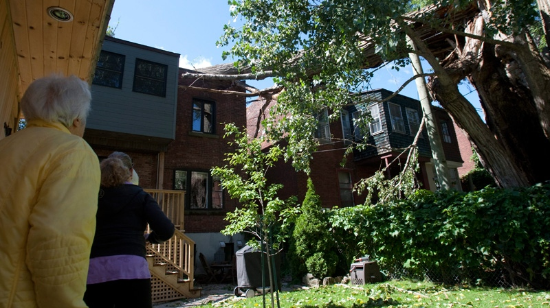 Neighbours look at the damage after a 300-year old tree was blown down onto a duplex by the remnants of Hurricane Irene in Montreal, Monday, Aug. 29, 2011. (Ryan Remiorz / THE CANADIAN PRESS)