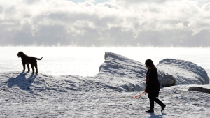 A woman walks her dog by Lake Ontario's shoreline as steam rises from the water surface in -20 C temperatures in Toronto on Tuesday Jan. 21, 2014. (Frank Gunn / THE CANADIAN PRESS)