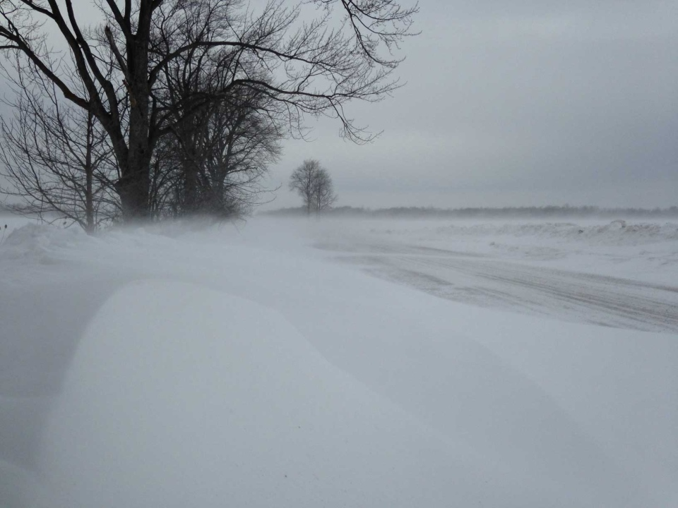 Blowing snow covers the the roadway north of Lucan, Ont. on Friday, Jan. 24, 2014. (Chuck Dickson / CTV London)