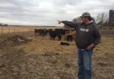 Keystone XL on Nebraska properties