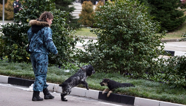 A female officer watches her sniffing dog playing with a stray dog near Sochi airport, Russia, Monday, Jan. 27, 2014. (AP / Pavel Golovkin)