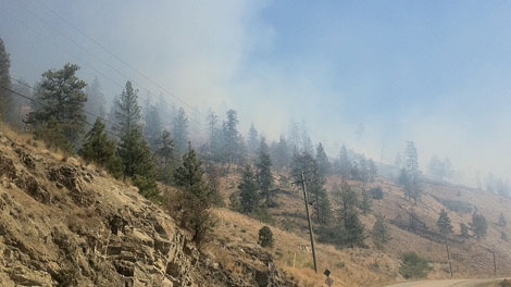 A forest fire has forced the evacuation of 550 people near Kelowna, B.C.