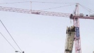 The big pink crane is seen outside of St. Joseph's Hospital in London, Ont. on Tuesday, Feb. 4, 2014.