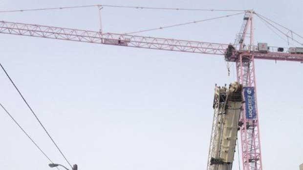 St. Joseph's pink crane