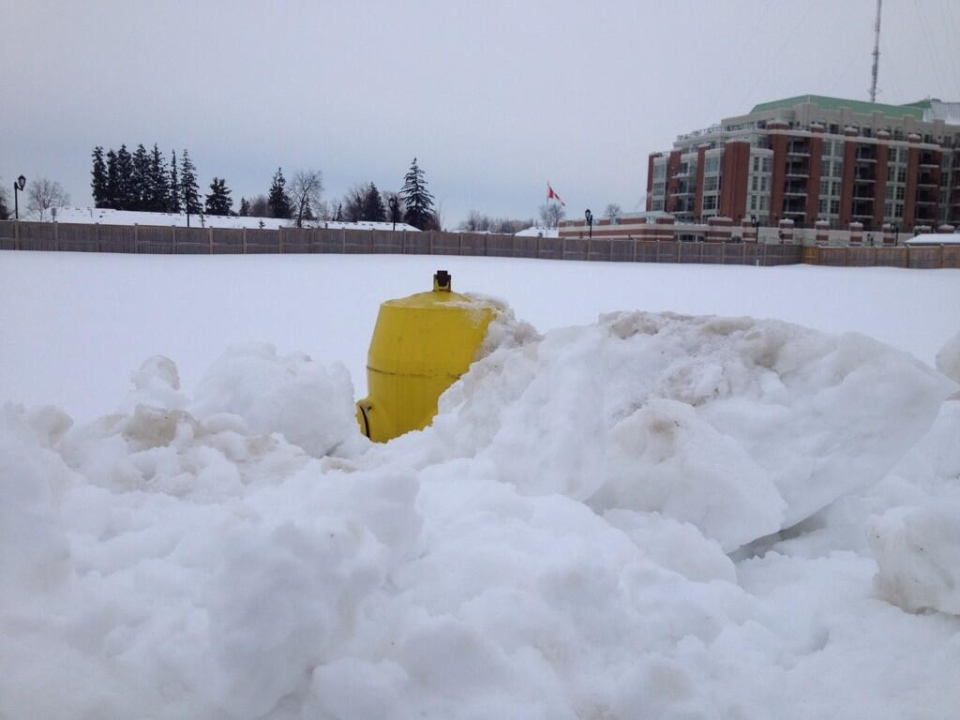 A big snowbank almost completely obscures a fire hydrant in London, Ont. on Tuesday, Feb. 4, 2014. (Jim Knight / CTV London)