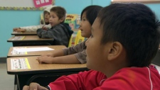 CTV News Channel: Aboriginal education reform