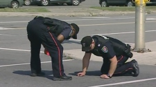 Police investigate the collision that killed a 17-year-old girl on Eagleson Road in Kanata Monday, Sept. 12, 2011.