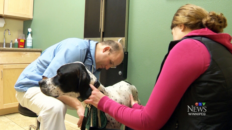 Dr. Darin Meulebroeck of Grand Valley Animal Hospital in Grand Forks, North Dakota.