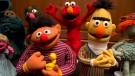 Bert and Ernie, as well as Elmo, centre, are among a donation of additional Jim Henson objects to the Smithsonian's National Museum of American History in Washington, Tuesday, Sept. 24, 2013. (AP / Jacquelyn Martin)
