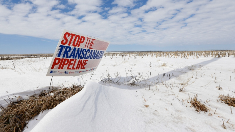 A sign reading 'Stop the Transcanada Pipeline' stands in a field near Bradshaw, Neb., along the Keystone XL pipeline route through the state, March 11, 2013. (AP / Nati Harnik)
