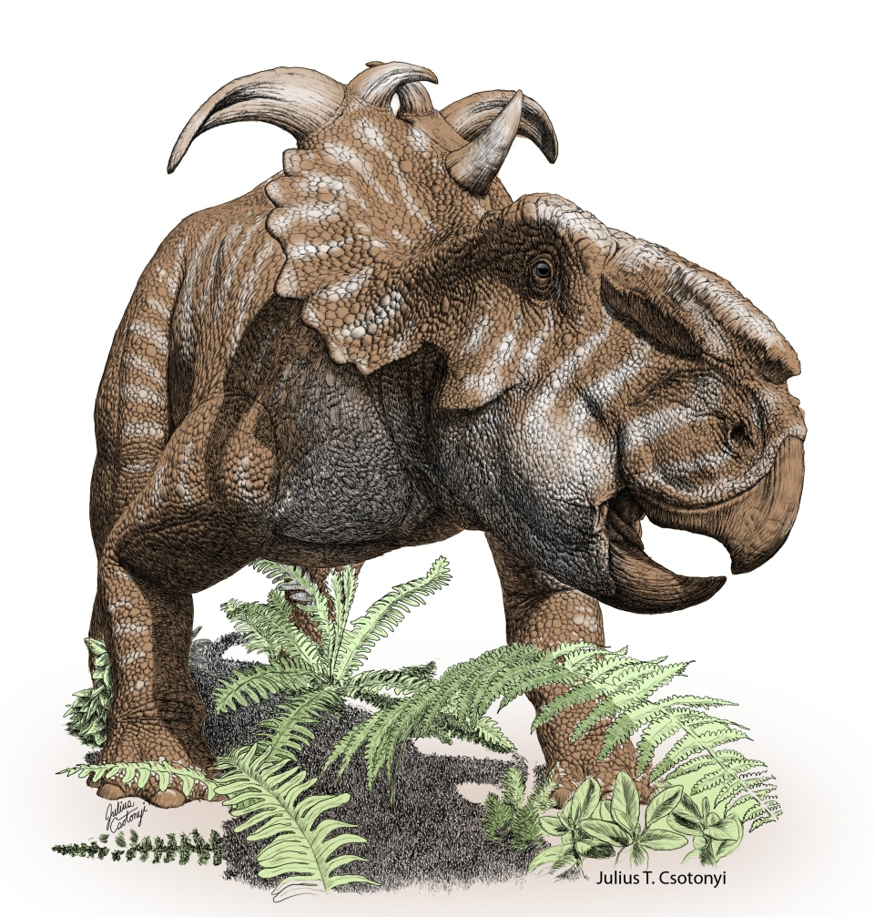 Atercurisaurus Massive 70-million-yea...