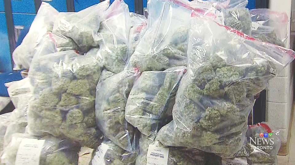 Nearly $2.4 million in cash, the largest seizure to date, was seized after a year-long probe into a cross-country drug-trafficking investigation, Toronto police announced Monday. (CTV Toronto)
