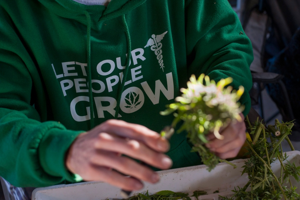 Medical marijuana in Canada