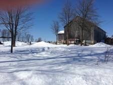cold barn