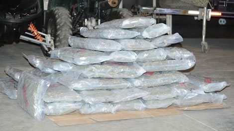 RCMP in Oliver seized 119 pounds from eight men they say were trying to smuggle it across the U.S. border. Sept. 23, 2011. (Handout)