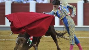 Spanish bullfighter Jose Tomas performs during a bullfight at the Valladolid bullring, in Spain, Thursday, Sept. 8, 2011.