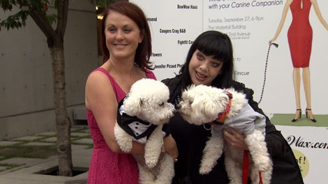 Paws for Style event organizer, Tammy Preast and rocker Bif Naked, hold their canine companions at the fundraiser on Tuesday night. (CTV) Sept. 28, 2011