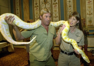 Steve Irwin, left and his wife Terri Irwin, pose with an albino Burmese python Tuesday, March 5, 2002 at the Paris Hotel and Casino in Las Vegas. Steve Irwin, the Australian television personality and environmentalist known as the Crocodile Hunter, was killed Monday, Sept. 4, 2006, by a stingray barb during a diving expedition. (AP / Joe Cavaretta)