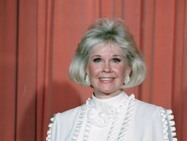 Doris Day to turn 90 with animal fundraiser